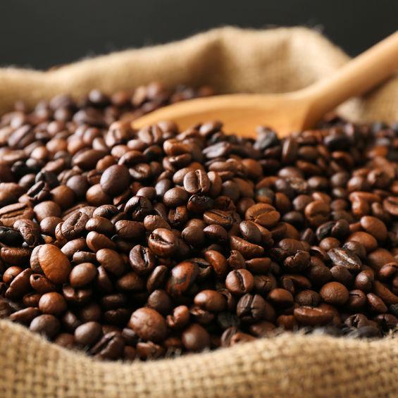 Cafe Pur Arabica Bio Terre Adelice