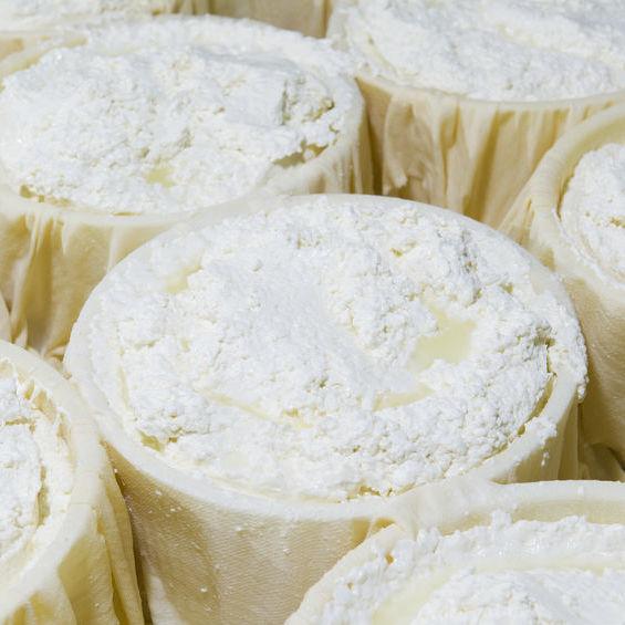 Fromage Blanc de Chevre Bio Terre Adelice