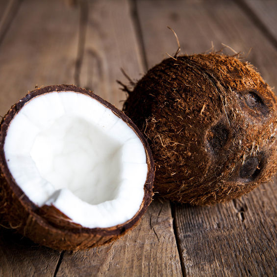 Noix de Coco Bio Terre Adelice